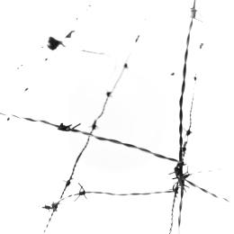 mapaespinos